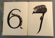 Animal Numbers (Bert Kitchen) (4)