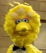 Big Bird in Soul Man