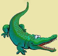 Crocodile-erinv