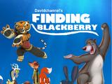 Finding Blackberry