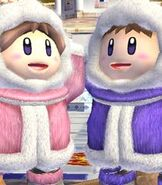 Ice Climbers in Super Smash Bros. Brawl