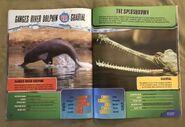 Predator Splashdown (17)
