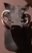 CMONH Warthog