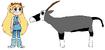 Star meets Beisa Oryx