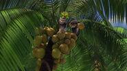 Madagascar-disneyscreencaps.com-7642