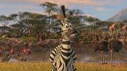 Madagascar2-disneyscreencaps.com-2821