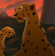 TLK 2 Cheetah