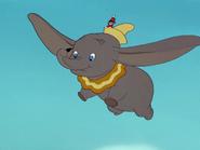 DumboScreen