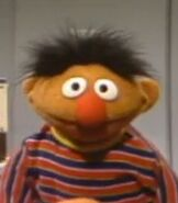 Ernie in Sesame Street