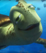 Crush in Finding Dory