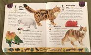 Pet Dictionary (14)