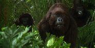 Congo-1995-movie-poster