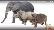 Hippopotamuses Behind Rhinoceroses and Elephants