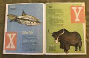 The Dictionary of Ordinary Extraordinary Animals (58)