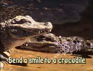 FMSADAK Crocodiles