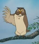 Owl in The Many Adventures of Winnie the Pooh