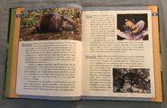 Scholastic Encyclopedia Of Animals (4)