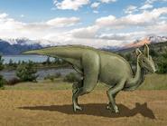 Dm lambeosaurus