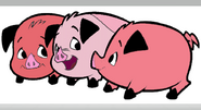 Pigs From Company Idiot