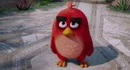Angry-birds-disneyscreencaps.com-909