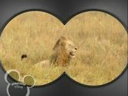 Little Einsteins Lion