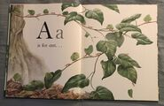 The A to Z Book of Wild Animals (1)