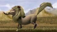 Warthog jungle beat