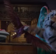 Aladdin 2019 Macaw