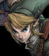 Link in The Legend of Zelda- Twilight Princess