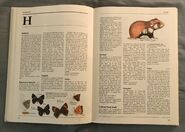 The Kingfisher Illustrated Encyclopedia of Animals (68)