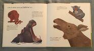 Can an Aardvark Bark? (12)