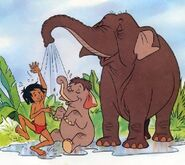 Elephants-in-baby-animals-from-disney-discovery-series