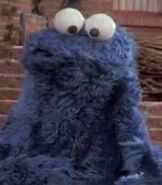 Cookie Monster in The Adventures of Elmo in Grouchland