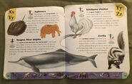 Extreme Animals Dictionary (26)