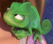 Pascal angry