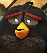 Bomb in The Angry Birds Movie-0