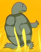 Funny-animals-2-turtle