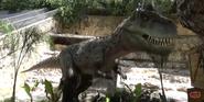 San Antonio Zoo Carnotaurus