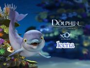 The Dolphin Story of a Dreamer Leena