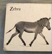 James Balog's Animals A to Z (14)