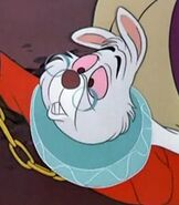 The White Rabbit in Alice in Wonderland