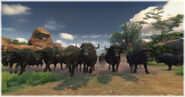 Cabela s ps3 african buffalo stampede by scottslive21-da3f190