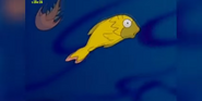 Simpsons Eveloution Fish