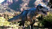 T-rex doe