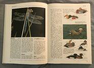 The Kingfisher Illustrated Encyclopedia of Animals (48)