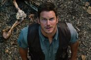 Jurassic World Owen Grady