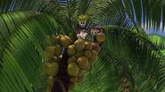 Madagascar-disneyscreencaps.com-7648