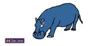 Molly the Common Hippopotamus