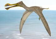 1551 tropeognathus peter montgomery