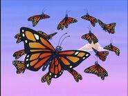 GDG Butterflies